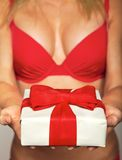 Sexy female in red underwear offering a gift Stock Photos