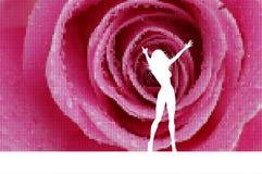 Sexy female on rose mosaic background. Silhouette of a sexy female on a rose mosaic background Royalty Free Stock Images
