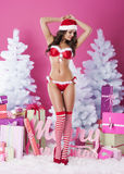 Sexy female santa claus Royalty Free Stock Photography