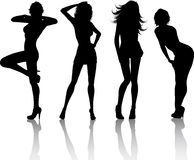 Sexy females. Silhouettes of four sexy females Stock Photography