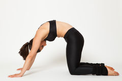 Sexy fit brunette woman in sports wear in yoga pose Stock Image
