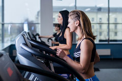 Sexy fit women running on treadmills in modern gym. Healthy young young girls doing running exercise on treadmill in gym. Sexy fit women running on treadmills Royalty Free Stock Image