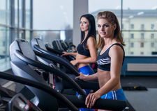 Sexy fit women running on treadmills in modern gym. Healthy young young girls doing running exercise on treadmill in gym. Sexy fit woman running on treadmills Stock Photography