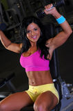 Sexy fitness girl Stock Images
