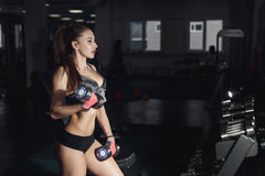 Sexy fitness woman in sport wear with perfect fitness body in gy. M performing exercises with dumbbell. copy space Royalty Free Stock Images