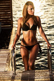 Sexy Frau auf dem Meer Stockfotografie
