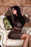 Sexy Frau im Leopardkleid im schönen Innenraum Lizenzfreies Stockbild