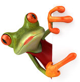 Sexy frog Royalty Free Stock Photos