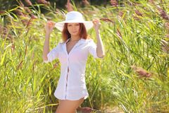 Sexy girl on background of tall grass Stock Photos
