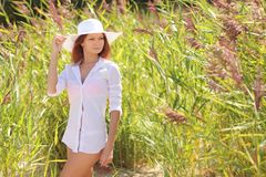 Sexy girl on background of tall grass Royalty Free Stock Photography