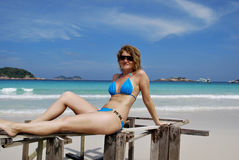 Sexy girl on the beachfront. Beautiful girl on the beach sitting on a piece of wood wearing sunglasses Stock Image