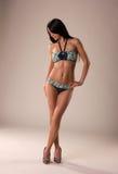 Sexy girl in bikini. Beautiful sexy girl in bikini Royalty Free Stock Photo