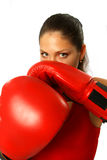 Sexy girl with boxing gloves Stock Photos