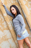 Sexy girl with brown hair fashion model Stock Photos