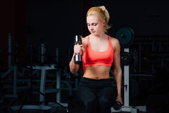 Sexy girl doing exercises in her arms biceps and triceps. fitness with dumbbells in the gym. Royalty Free Stock Image
