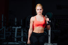 Sexy girl doing exercises in her arms biceps and triceps. fitness with dumbbells in the gym. Nice cute female. sitting on the bench Stock Photo
