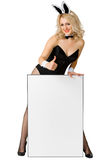 Sexy girl dressed as a rabbit with a poster Royalty Free Stock Photo