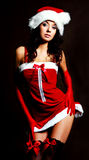 Sexy girl dressed as Santa. Studio portrait of a sexy young brunette woman dressed as Santa Royalty Free Stock Images