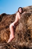Sexy girl on hay stack Stock Images