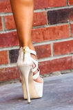 Sexy girl leg shoe Royalty Free Stock Photo