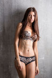 Sexy girl in lingerie with lace brindle, textural on a gray back Stock Photo