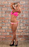 Sexy girl in pink lingerie against a brick wall Royalty Free Stock Images