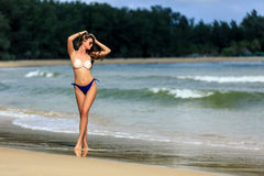 Sexy girl posing at tropical beach Stock Photography
