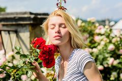 Sexy girl with red rose. beautiful woman with blonde hair in garden. natural beauty. Spa and skincare. summer and spring. Park nature. rose flower smell royalty free stock images