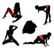 Sexy girl silhouettes Royalty Free Stock Photos
