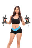 Sexy girl in sportswear exercising with two barbells Royalty Free Stock Photography
