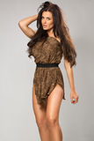 Sexy girl wearing leopard fur Royalty Free Stock Images