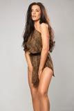 Sexy girl wearing leopard fur Stock Photos