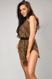 Sexy girl wearing leopard fur. Sexy brunette wearing leopard fur Stock Images