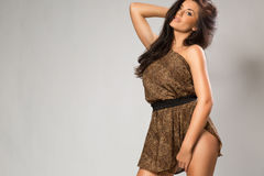 Sexy girl wearing leopard fur Stock Image
