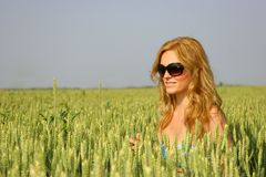 Sexy girl in a wheat field Stock Photo