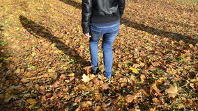 Sexy girl woman blue jeans walk autumn leaves floor forest park stock video