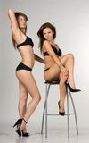 Sexy girls in a black swimsuit. One girl is sittin Royalty Free Stock Image