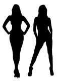 Sexy girls, female figures. Sexy girl on a white background Stock Photography