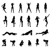 Sexy girls silhouette poses Stock Image