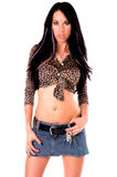 Glamour Model Stock Photography