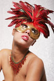 Sexy gorgeous woman in mask Royalty Free Stock Photos