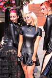 Sexy gotische meisjes stock afbeelding