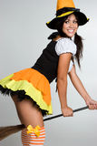 Sexy Halloween Witch. Costume girl Royalty Free Stock Photography