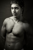 handsome muscular young man stock photography