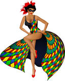 Sexy harlequin girl. Vector illustration of girl with harlequin carnival dress Stock Photography