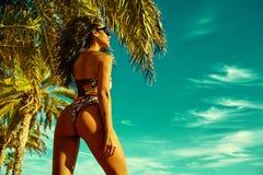 Sexy hot model in bikini Stock Photography