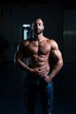 Sexy Italian Man Posing In Gym Stock Photography