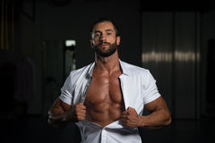 Sexy Italian Man Posing In White Shirt Royalty Free Stock Photo
