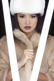 Japanese Asian Girl In Fur Coat & Hat Royalty Free Stock Images