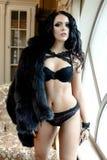 Sexy jonge vrouw die lingerie draagt Royalty-vrije Stock Foto's